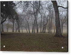 Foggy Morning Acrylic Print