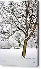 Foggy Morning Landscape - Fractalius 3 Acrylic Print