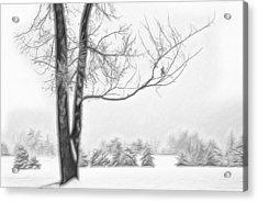 Foggy Morning Landscape - Fractalius 5 Acrylic Print by Steve Ohlsen