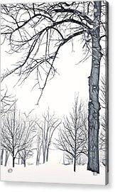 Foggy Morning Landscape - Fractalius 6 Acrylic Print by Steve Ohlsen