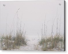 Acrylic Print featuring the photograph Foggy Morning by Michele Kaiser