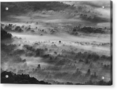 Acrylic Print featuring the photograph Foggy Morning On The Blue Ridge Parkway by Photography  By Sai