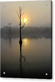 Foggy Morning Sunrise Acrylic Print