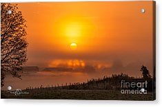 Foggy Morning Acrylic Print by Torbjorn Swenelius