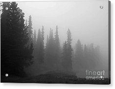 Foggy Mt Evans Acrylic Print by Barbara Schultheis