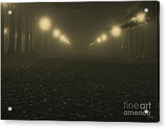 Foggy Night In A Park Acrylic Print