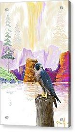 Foggy Notch Falls Acrylic Print by J Griff Griffin