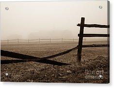 Foggy Pasture Acrylic Print