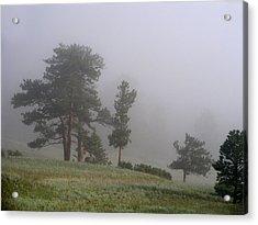 Acrylic Print featuring the photograph Foggy Pines by Craig T Burgwardt