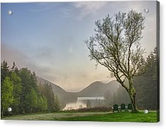 Foggy Starts Acrylic Print by Kristopher Schoenleber