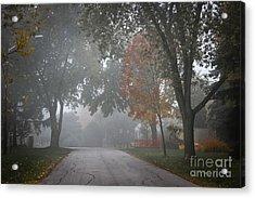 Foggy Street Acrylic Print by Elena Elisseeva