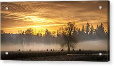Foggy Sunrise Acrylic Print by Cassius Johnson