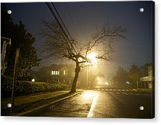 Foggy Tree Acrylic Print by Beau Finley
