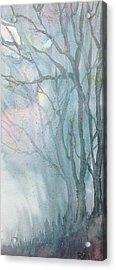 Foggy Trees Acrylic Print by Rebecca Davis
