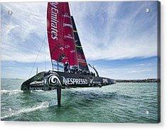 Foiling One Acrylic Print by Chris Cameron
