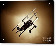 Fokker Dr-1 Acrylic Print