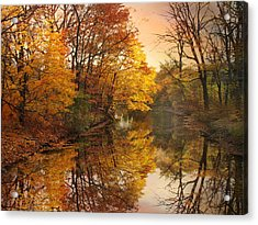 Acrylic Print featuring the photograph Foliage Reflected by Jessica Jenney