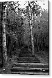 Follow Me... Acrylic Print