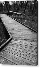 Follow The Boardwalk Acrylic Print by Robert Clayton