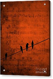 Follow The Music Acrylic Print