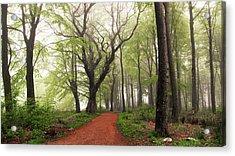 Follow The Red Path. Acrylic Print