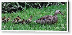 Following Mommy Acrylic Print by Lee Dos Santos