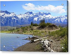 Following The Athabasca River Acrylic Print by Teresa Zieba
