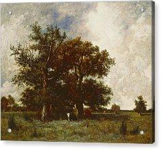 Fontainebleau Oak Acrylic Print by Jules Dupre