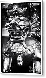 Foo Dog Acrylic Print by John Rizzuto
