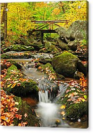 Foot Bridge- Macedonia Brook State Park Acrylic Print by Thomas Schoeller