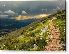Foot Path Into The French Alps Acrylic Print