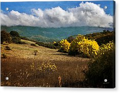 Foothill Autumn In Southern Oregon Acrylic Print by Mick Anderson