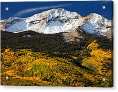 Foothills Of Gold Acrylic Print by Darren  White