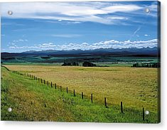 Foothills Of The Rockies Acrylic Print by Terry Reynoldson