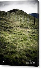 Foothills Of The Tehachipis Acrylic Print by Rich Collins