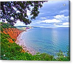 Footpath To Sidmouth Acrylic Print by Andrew Middleton