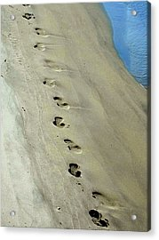 Footprints At Breech Inlet Acrylic Print