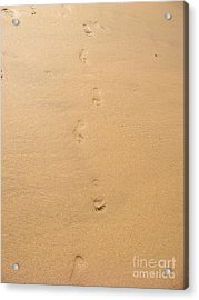 Footprints In The Sand Acrylic Print by Pixel  Chimp