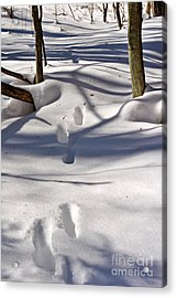 Footprints In The Snow Acrylic Print by Louise Heusinkveld
