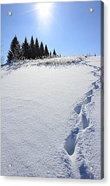 Footprints In The Snow Acrylic Print by Penny Meyers