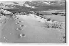 Footprints Acrylic Print by JC Findley