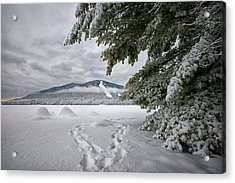 Footsteps To The Mountain Acrylic Print