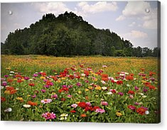 For The Beauty Of The Earth Acrylic Print