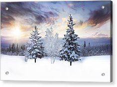 For The Love Of Winter Acrylic Print by Amber Fite