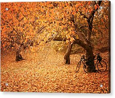 For Two - Autumn - Central Park Acrylic Print