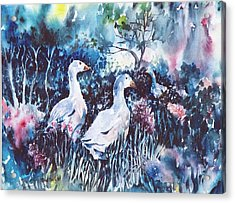 Acrylic Print featuring the painting Foraging Ducks  by Trudi Doyle