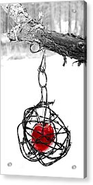 Forbidden Fruit Acrylic Print