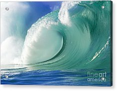 Force Of Nature Acrylic Print by Paul Topp