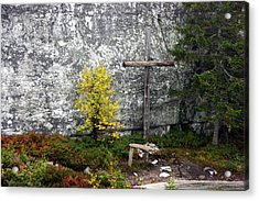 Acrylic Print featuring the photograph Forest Altar by Leena Pekkalainen