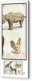 Forest Animals Group 3 Suitable For Hanging Frames Acrylic Print